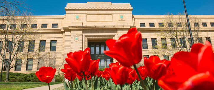 Red tulips in front of Strong Hall