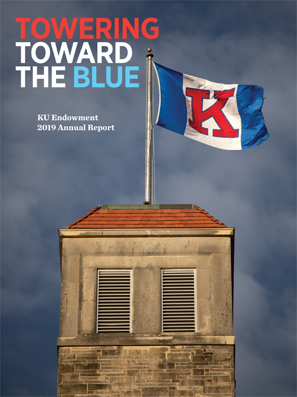 Towering Toward the Blue: Annual Report Cover